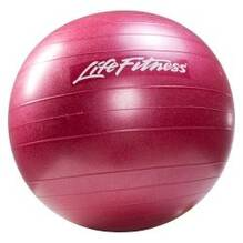 LifeFitness Stability Ball